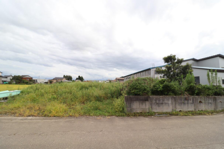 現地写真 北側から撮影