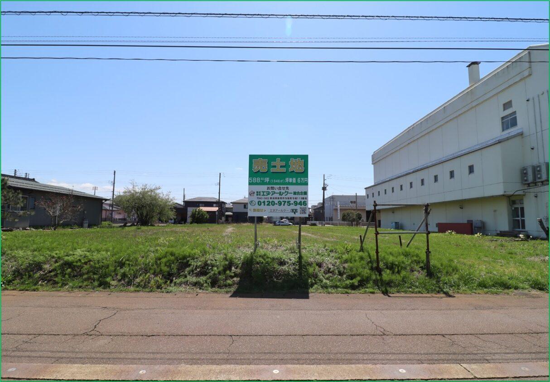 敷地(北側道路より撮影)