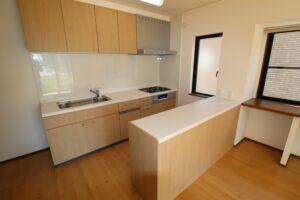 キッチン(食洗器、吊戸棚、対面収納付き)2 新品