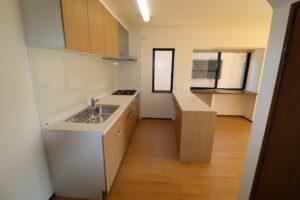 キッチン(食洗器、吊戸棚、対面収納付き)3 新品